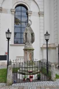 katedra-zamosc-3